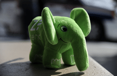 formation zend framework - elephpant